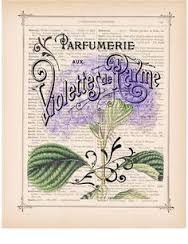 Bildresultat för old french perfume ad