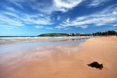 Manly beach Manly Beach, Photography Gallery, Landscape Photographers, Dream Vacations, Travel Style, Places Ive Been, Around The Worlds, Adventure, City