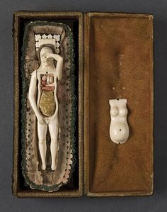 Female Anatomical Figure  18th century  Science Museum/SSPL A642635-6