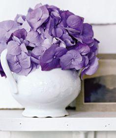 Sugar bowl used as flower vase