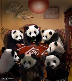 Pandas Playing Mah Jongg - Worth1000 Contests
