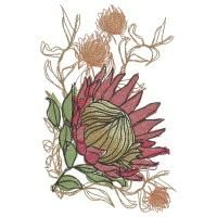 Protea designs that looks like hand drawn sketches. The outlines are meant to be 'off' which adds an artisic look to the designs. Very good for decor, linen, cushions and curtains Sketch Drawing Images, Drawings, Drawing Tips, Wild Child Tattoo, Child Tattoos, Art Floral, Protea Flower, Flower Sketches, Portrait Illustration