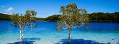 Fraser Island Jewel Of Australia's Natural Heritage! Fraser Island Australia, Coast Australia, Sand Island, Rainbow Beach, Travel Wallpaper, Free Travel, Image Hd, World Heritage Sites, Places To Travel