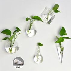 Home Garden Clear Wall Hanging Plant Terrarium Glass Planter Vase Pots Container in Home & Garden, Home Décor, Vases | eBay