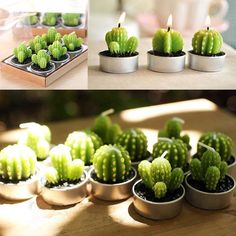 http://www.rosegal.com/candle-holders/6pcs-creative-simulation-succulent-plants-433312.html