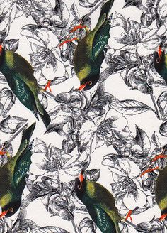 Stonefabrics: Black/White/Green finch bird printed stretch Cotton Sateen