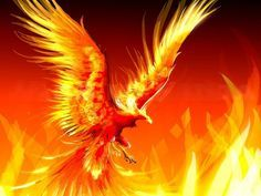 Scorpio is probably the most feared sign in the zodiac. This is due to the infamous Scorpio stinger. However, very few people know that the ultimate symbol of a Scorpio is an all loving dove. It is said in astrology that Scorpio is the only sign...