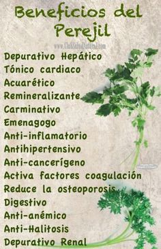 Beneficios del Extracto de Perejil - Club Salud Natural