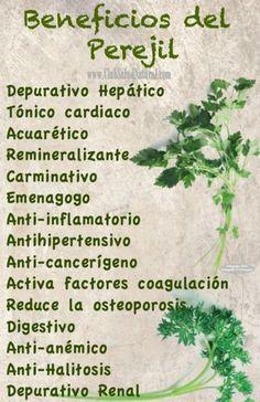 Beneficios del Extracto de Perejil - Club Salud Natural