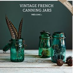 Vintage wedding decanters, containers and decorations! Vintage French Canning Jar is one great example, check 2nd hand stores, personalize your wedding with containers and contents! We customize your celebration, travel and honeymoon! For availability:  https://www.itams.com/travel/CERegW_T368.asp?k=365489011BD903538B0011BD90388C3B011BD90377062011BD90|246D57|12AFC7&mode=1   #allcouplesallowed #allbridesallowed 888-696-4202