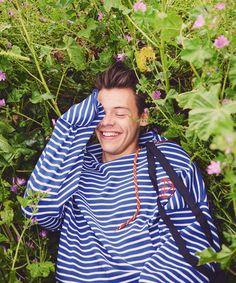 Harry styles 527061962644464065 - Harry Styles, flower boy Source by kenliesau Harry Styles Citations, Frases Harry Styles, Harry Styles Lindo, Harry Styles Fotos, Harry Styles Smile, Harry Styles Cute, Harry Styles Imagines, Harry Styles Pictures, Harry Edward Styles