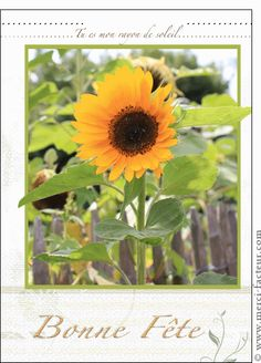 Carte Tu es mon rayon de soleil pour envoyer par La Poste, sur Merci-Facteur !