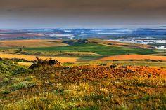 Dobrogea Romania Danube Delta, Romania, Vineyard, Golf Courses, Cruise, Mountains, Country, World, Nature