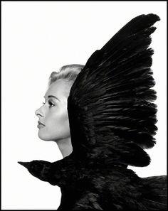 "Tippi Hedren, main actress in British film director Alfred Hitchcock's movie ""The Birds"", 1962, by Philippe Halsman"