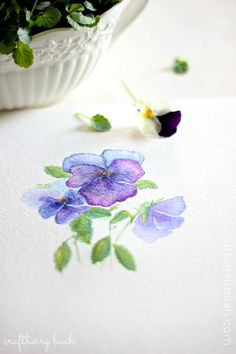 Craftberry Bush: Pansies / Violas and some watercolor....