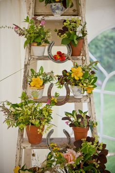 One of my best friends made us a great decoration for the marquee using a vintage ladder and a collection of charity shop crockery and small terracotta pots - all stuffed with flowers and herbs from her garden! Looked and smelled fabulous!