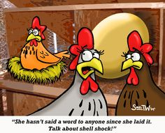 funny chicken jokes | Funny Cartoon of the Week: Chicken Cartoon – Shell shock!!