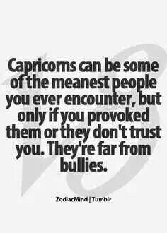 I am mean I am Capricorn but I will never be a bullie NEVER