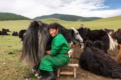 A nomadic woman milks a yak in this National Geographic Your Shot Photo of the Day.