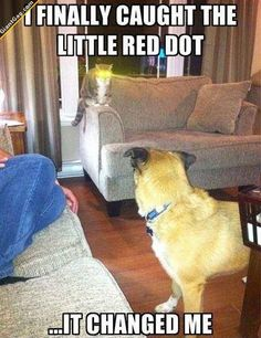 The Red Dot Changed Me,  Click the link to view today's funniest pictures!