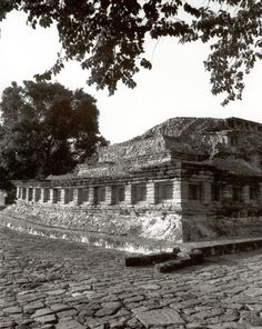 building at Tajin site  Veracruz
