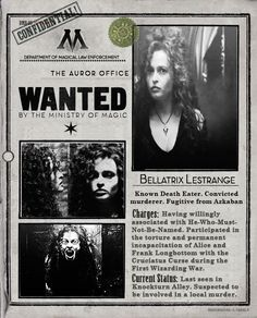 Department of Magical Law Enforcement: Bellatrix Lestrange - Wanted Harry Potter Love, Harry Potter Fandom, Harry Potter World, Larp, Welcome To Hogwarts, No Muggles, Ministry Of Magic, Bellatrix Lestrange, Albus Dumbledore