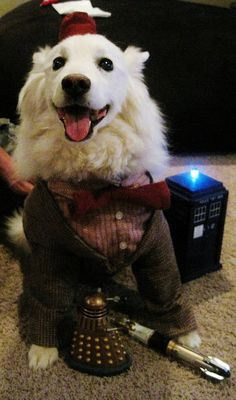 Doctor Who Eleven pet costume #halloween