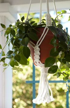 Learn how to turn clothesline into a decorative macrame plant hanger. Macrame Plant Holder, Macrame Plant Hangers, Plant Holders, Farm Crafts, Diy And Crafts, Hanging Plants Outdoor, Indoor Plants, Hanging Pots, Indoor Garden