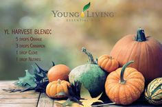 Young Living Harvest Blend Diffuser Recipe: Diffuse 5 drops Orange essential oil, 3 drops Cinnamon essential oil, 1 drop Clove essential oil, and 1 drop Nutmeg essential oil