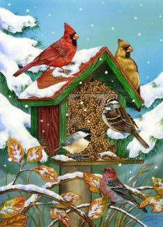 Jane Maday  —  (577x800) Pretty Birds, Love Birds, Beautiful Birds, Cross Stitch Bird, Realistic Paintings, Animal Drawings, Cute Drawings, Watercolor Red, Watercolor Paintings