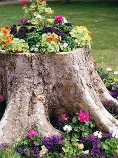 Bohre ein paar Löcher in den Baumstumpf – deine Kreation lässt deine Nachbarn grün vor Neid werden! | Unglaublich
