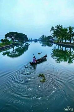 Gods own country  Kerala in India