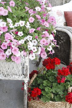 Petunias and geraniums-- we love the pink, white and red! The wicker textures really make this special. This is just one corner of a flower-filled patio update by Kristen Whitby of Marie Claire Inspired. See it on The Home Depot Blog. || @kristenwhitby