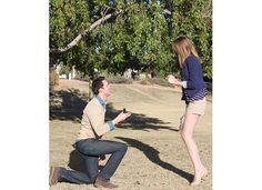 Proposal Reaction