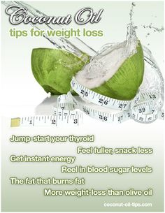 12 Essential Coconut Oil Weight Loss Tips - Health Plus - Diet Plans, Weight Loss Tips, Nutrition and Coconut Oil Weight Loss, Weight Loss Water, Easy Weight Loss, Healthy Weight Loss, Reduce Weight, How To Lose Weight Fast, Lose Fat, Weight Gain, Coconut Oil Capsules