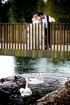 Pre-wedding photography in London - Kew gardens, 40 Winks and more.