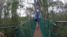 Tsitsikamma Canopy Tour - Linda Armstrong Unzipping Adventure