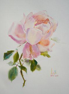 Watercolor by Sattha Homsawat (LaFe) Watercolor And Ink, Watercolor Flowers, Watercolor Paintings, Rose Sketch, Retro Art, Botanical Illustration, Art Oil, Art Lessons, Flower Art