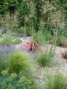 Cool 47 Lovely Mediterranean Garden Design Ideas For Your Backyard. Seaside Garden, Coastal Gardens, Beach Gardens, Garden Cottage, Pebble Garden, Dry Garden, Gravel Garden, Gravel Pathway, Garden Landscaping
