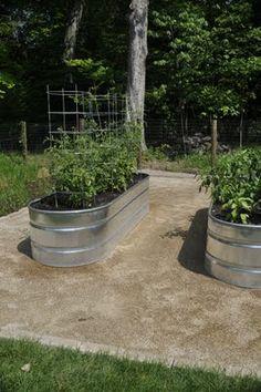 Thinking Outside The Boxwood: Galvanized Stock Tank Veggie Garden - Update