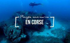 Où faire de la plongée sous-marine en Corse? 3 spots de plongée incontournables. Corsica, Snorkeling, Light Art, Diving, Poses, Prints, Movie Posters, Travel, Lights