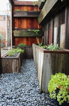 Scrap wood potting shed inspiration