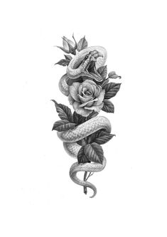 Image could contain: Plant – snake snake - diy tattoo images - Image could contain: Plant snake snake - Snake And Flowers Tattoo, Flower Tattoo Drawings, Snake Tattoo, Flower Tattoo Designs, Flower Tattoos, Unique Tattoo Designs, Tattoo Sketches, Snake Around Arm Tattoo, Tattoo Design Drawings