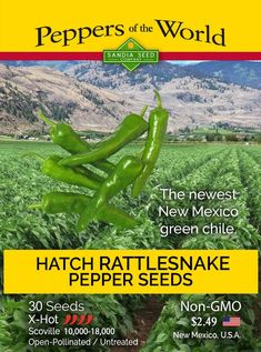 Hatch Green Rattlesnake X-Hot Chile Seeds Growing Peppers, Capsicum Annuum, Pepper Plants, Pepper Seeds, New Mexican, Backyard Projects, Stuffed Hot Peppers, Green, Vegetable Gardening