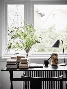 Books and plants on the desk.