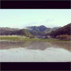 A morning satoyama view, Tamba, Japan 2012/04/23