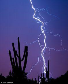 Lightning Over Sonoran Desert Thunderstorm And Lightning, Lightning Photos, Ride The Lightning, Lightning Strikes, Lightning Bolt, Lighting Storm, Cool Lighting, Desert Art, Thunderstorms