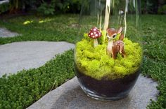 Keep it Glassy: 21 Genius Terrarium Hacks via Brit + Co. 16. Moss Only: If your thumb is more black than green, go for moss. It's nearly impossible to kill… if you do kill it, please never get a puppy. (via Please Note)