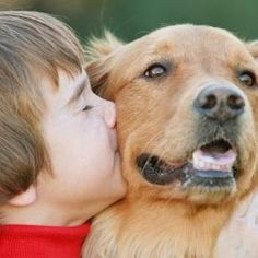 """""""O Grito do Bicho"""": """"Beijar cachorros pode fortalecer sistema imunológ..."""
