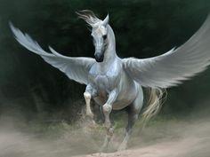 hevonen kuvia, Pegasus taustakuvia, siivet taustat
